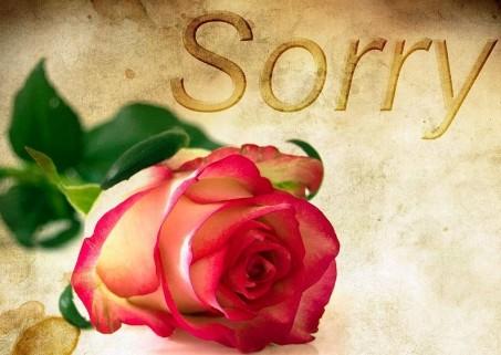 rose-1271216_960_720