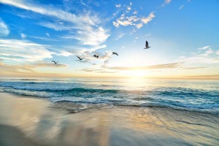 beach-1852945_960_720