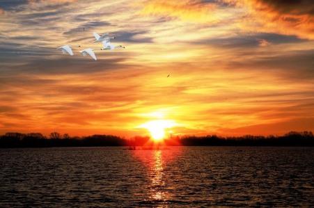 sunset-2011400_960_720