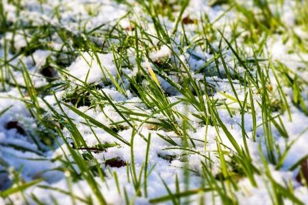 snow-624363_960_720