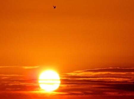 sun-579934_960_720