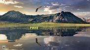 free.001