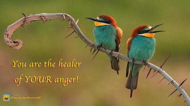 healer of anger.001
