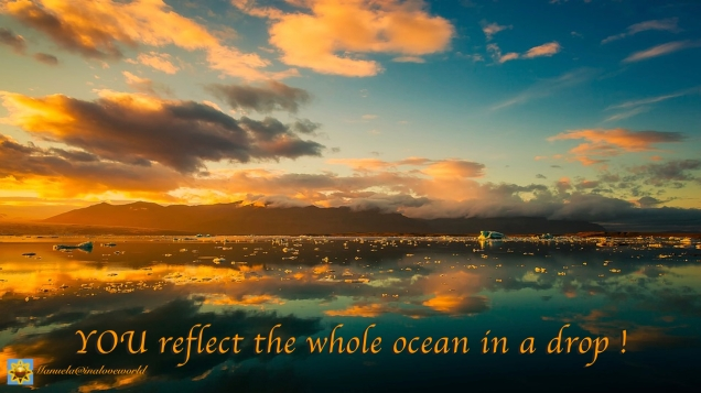 the ocean.001